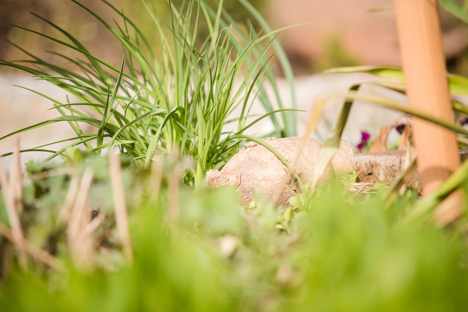 Das sind wir von gartenbau josef rupp in bibertal silheim im landkreis neu ulm - Gartenbau ulm ...